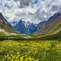 Kashmir Family Tour Packages With Price