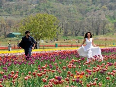 Bollywood movie song being shot in tulip garden Kashmir
